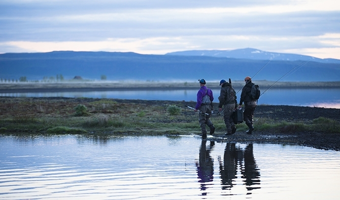 Trout Fishing in Iceland